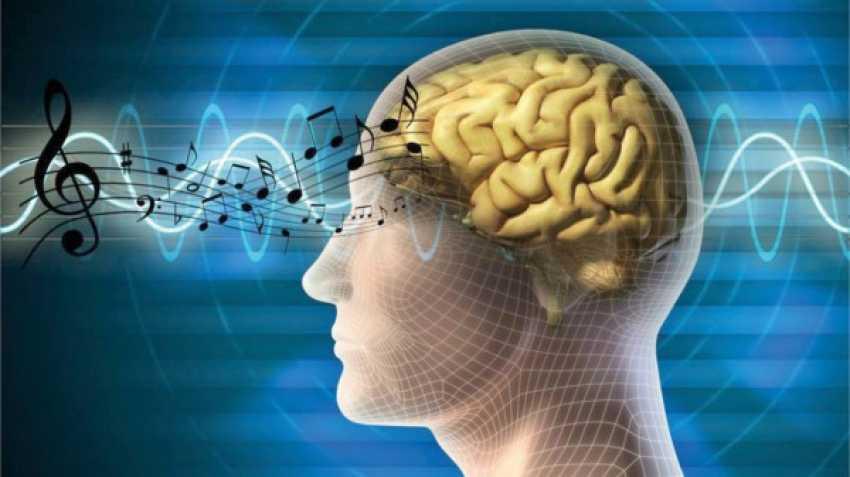 الموسيقى تُحفّز دوائر الدماغ